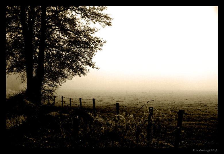 misty 2 -