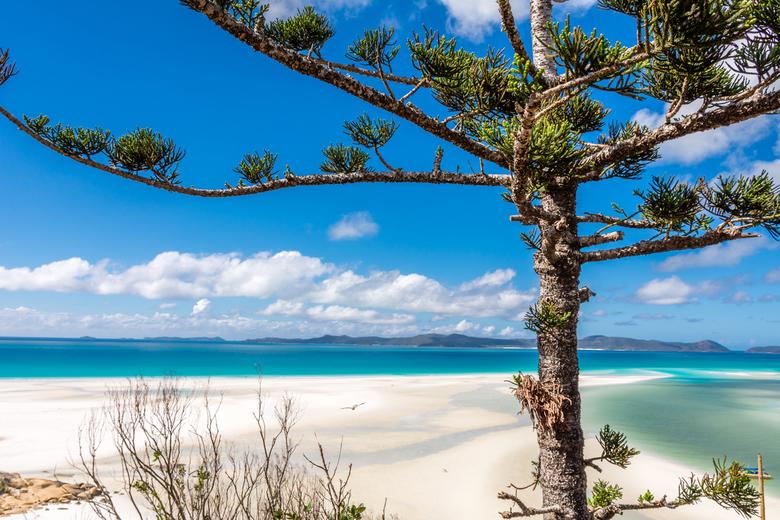 White Haven austalie - het mooiste strand dat ik ooit zag!!!!<br /> White Haven in Australie.