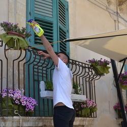 bloemetjes water geven