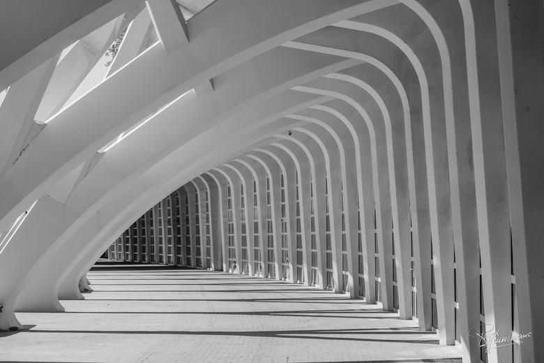 Valencia - Bij Ciudad de las Artes y las Ciencias (CAC) in Valencia