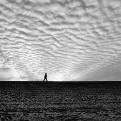 Wandelaar op dijk