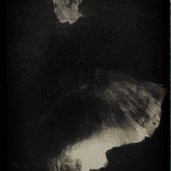 Ballerina (pinhole)