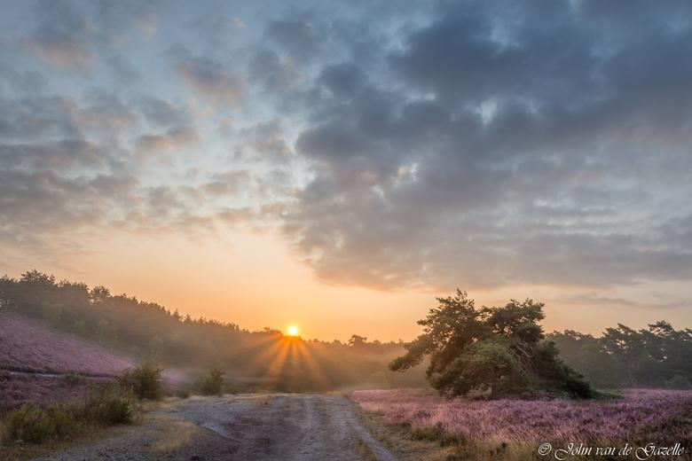 Bloeiende Brunssummerheide - De bloeiende Brunssummerheide tijdens de zonsopkomst.<br /> <br /> Efix: ISO 100, 17 mm,  f/ 11, 1/80 sec.<br /> Bedan