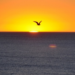 image.jpgmooie zonsondergang in Carvoeiro (portugal)