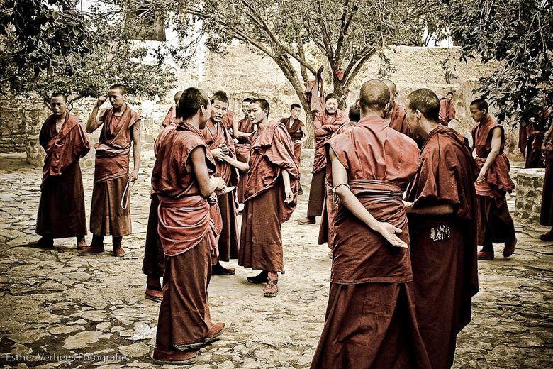 Goddelijk debat - In het Seraklooster in Lhasa tibet, komen dagelijks jongen monnikken bij elkaar om een debat te voeren. Tijdens dit debat verdedigen