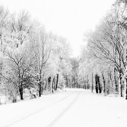 Winter in Cuijk