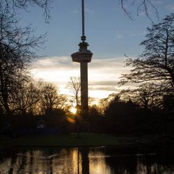 Rotterdam - 010