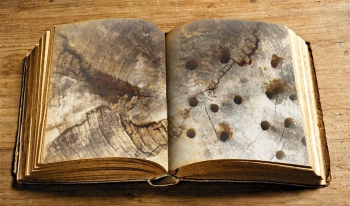 wat vertelt ons dit oude boek eigenlijk?... -
