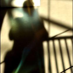 reflecties in het glazen huis