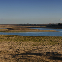 Het Zwin panorama 2