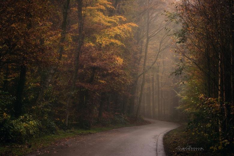 """Colourfall. - In mijn hoofd is het al een beetje herfst... <img  src=""""/images/smileys/wilt.png""""/> Bedankt voor jullie leuke reacties op mijn vorige fo"""