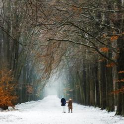 Dutch Winter II