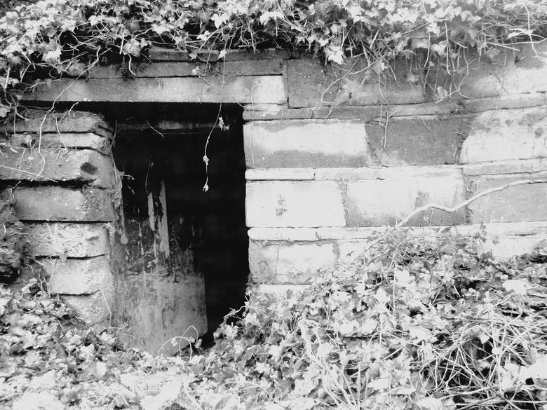 A Hobbit House? - Lekker mysterieus hoekje, wie woont daar?
