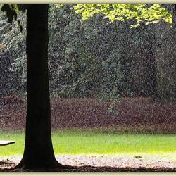 2019-10-02 regen en zon