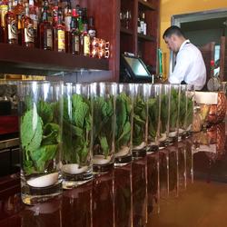Mojito staat klaar in Little Havanna Miami