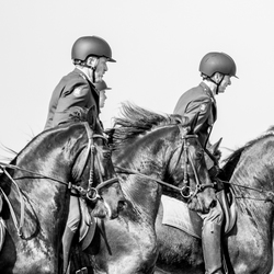 ere escort cavalerie op hun friezen