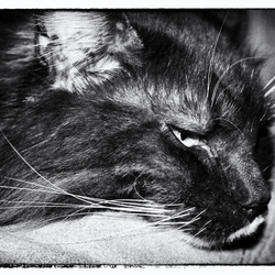The Hangover.....