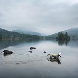 Schotland in de ochtend