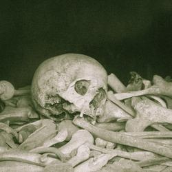 Resten van soldaten in l'Ossuaire de Douaumont