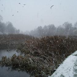 De winter in aantocht.