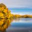 Tevenerheide herfstkleuren