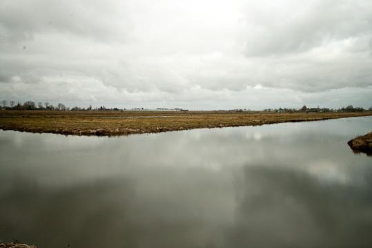 Waterlandschap - Waterlandschap