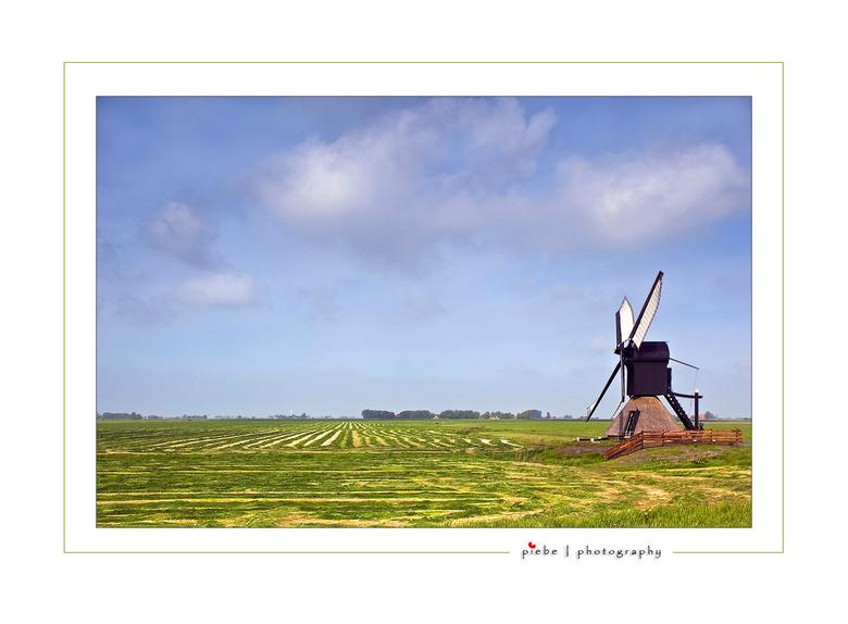 Pas gemaaid - Deze foto heb ik afgelopen zaterdag (09-05-2009) gemaakt nabij Workum. Het was molendag, het gras wat net gemaaid en de molen staat haak