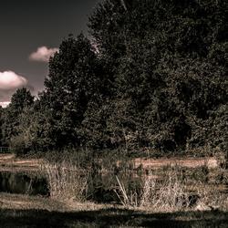 Steenbergerpark