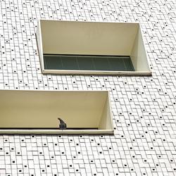 Groningen architectuur 4