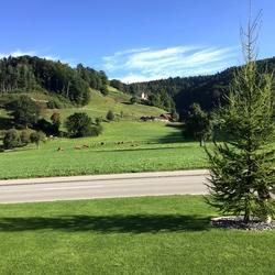 Landschap Zwitserland