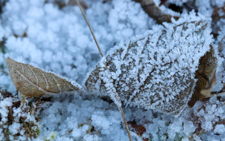 Ice ice baby -