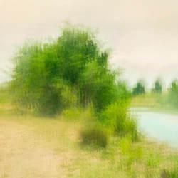 riverbank steafull