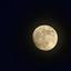 Maan boven Hulst