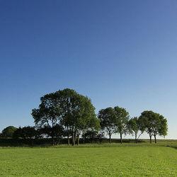 In de polder....