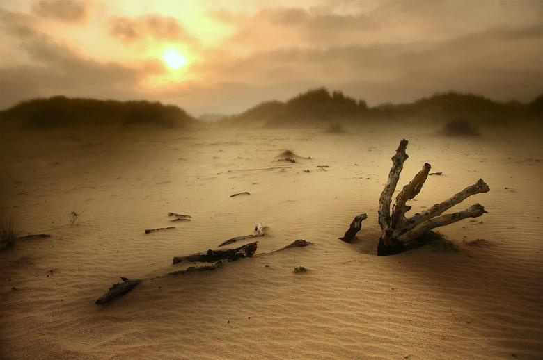 Duinlandschap - een stukje duinlandschap in westhoek bij het Belgische de Panne, tijdens een mistige zonsopkomst.<br /> groeten, bert