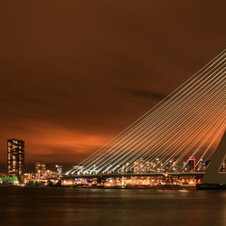Stroke of unexpected luck @ Erasmusbrug Rotterdam