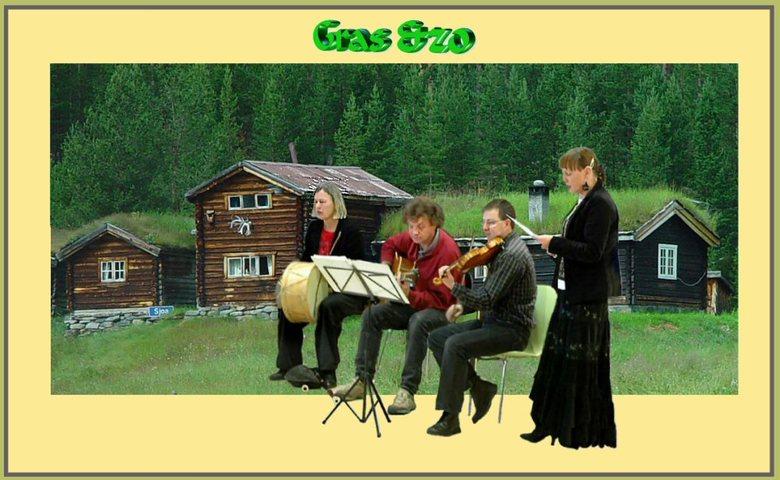 Oud en nieuw - De daken van gras vond ik zo mooi bij de naam van ons folkmuziekgroepje passen... hier staan overigens niet alle leden van Gras er op,