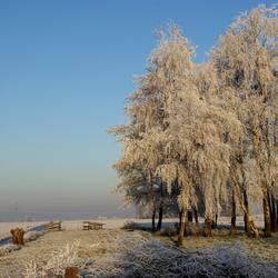 winters plaatje