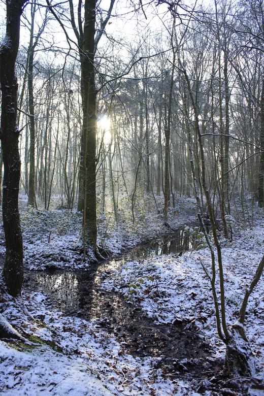 zonnen stralen  - s`morgens toen ik wakker werd zag de zon en de sneeuw en ik dag dat word maar weer lekker foto`s maken <br /> <br /> vriendelijke