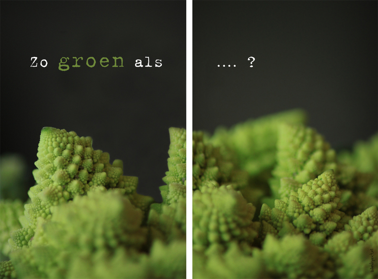 Raadplaat: Zo groen als... ? - Zo groen als...? <br /> Raad jij welke groente het is (en heb je misschien zélfs een lekker recept er voor)? Ik ben be