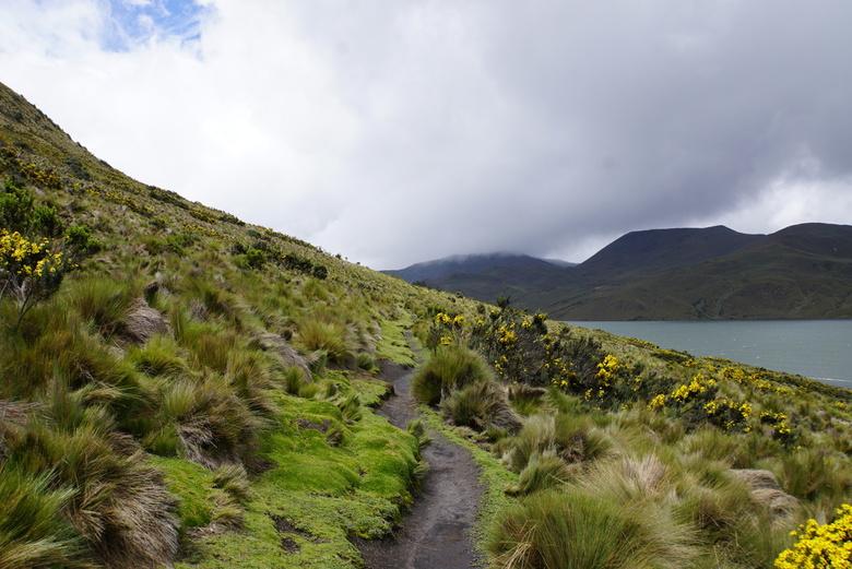Antisana - Natuurpark in Ecuador