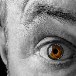 eye of the lens incl body.jpg