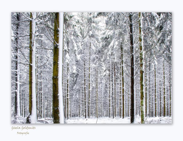 Verlangen -  Wat zou het toch geweldig zijn als we dit deze winter weer te zien krijgen .<br /> Deze is van de winter 2019 de Hoge Venen<br /> <br /