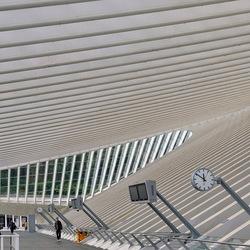 Paradepaartje station Luik.
