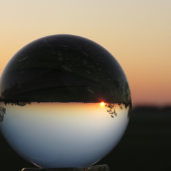 Glazenbol in de avondzon