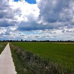 landschap