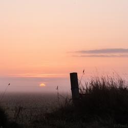 Mistige zonsopkomst Hoge Berg