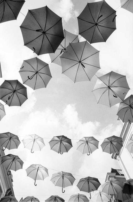 Paraplu in zwart wit - Kleurrijke paraplu&#039;s in Utrecht<br /> <br /> Pentax K1000 - Ilford Delta 100 Expired 2003