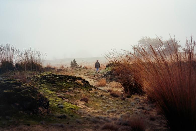 mist in de duinen -