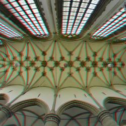 Ceiling Grotekerk Dordrecht 3D fish-eye 8mm